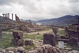 Volubilis moulay idris.jpg