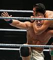 WWE 2013-11-08 22-46-48 NEX-6 8667 DxO (10959354674).jpg
