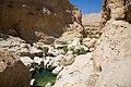 Wadi Bani Khalid (4).jpg