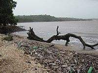 Waste cocobeach india.jpg