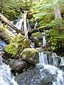 Waterfall feeding Thunder Creek - Flickr - brewbooks (1).jpg