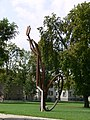 Weingarten Stadtgarten Schad 5.jpg