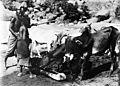Wellcome excavations in Sudan; Segadi Wells, 1912 Wellcome M0013039.jpg