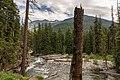 Wenatchee National Forest (22007378952).jpg