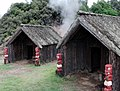 Whakarewarewa (4).jpg