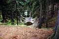 Wieściszowice, Zielony Stawek (Czarne Jeziorko) - fotopolska.eu (172763).jpg