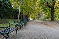 Wien Belvedere Botanischer Garten Allee2.jpg
