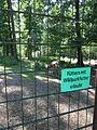 Wildpark Pforzheim Fütterungserlaubnis.JPG