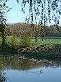 Willian duck pond - geograph.org.uk - 2353399.jpg