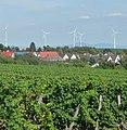 Windräder, Weinberge - Dirmstein - panoramio.jpg