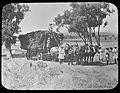 Women and horses pulling cart full of hay, Cowra Experiment Farm 1919 (25330942221).jpg