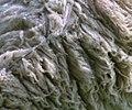 Wool (460468810).jpg