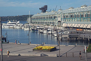 Finger Wharf - The Finger Wharf and marina in Woolloomooloo Bay