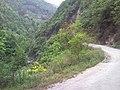 Wufeng, Yichang, Hubei, China - panoramio (21).jpg