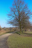 Wuppertal Metzmachersrath 2015 014.jpg