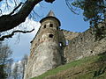 Zamek2 - panoramio.jpg