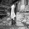 Zdravljenje šena na obrazu z ovčjim mlekom in smodnikom, Skomarje 1963.jpg