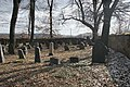 Židovský hřbitov u Měchnova4.JPG