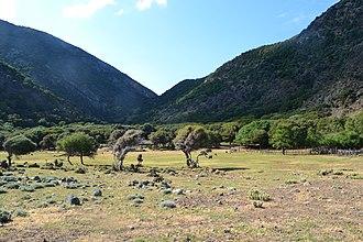 Samothrace - Landscape