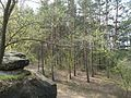Богданова гора - panoramio (3).jpg