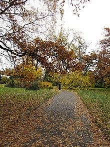 Jardin botanique de saint p tersbourg wikip dia for Alexandre jardin bibliographie