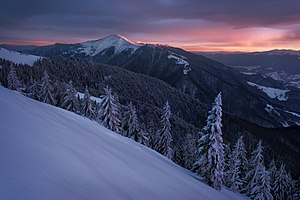 Вид на гору Стримба зимовим вечером.jpg