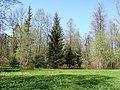 Дворцовый парк Гатчины-Palace Park in Gatchina - panoramio (6).jpg