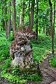 Курортний парк DSC 0300.jpg
