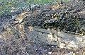 Непран Вячеслав, Осинівські піщаники, геологічна Пам'ятка природи, 44-233-5002, 49°33'14.4N 39°04'09.7E (3).jpg