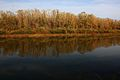 Река Урал - panoramio (9).jpg