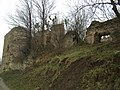Руїни замку в с. Новомалин (ракурс 7).JPG