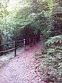 Смоларски водопад 51.jpg