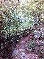 Смоларски водопад 66.jpg