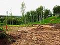 Строящийся дом в поселке УНИВЕРСИТЕТСКИЙ рядом с Академгородком Новосибирска 11.jpg
