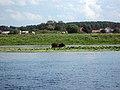 С.Пасечки, вид с Городского озера - panoramio.jpg