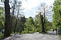 Трускавецький парк 14.jpg