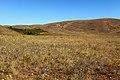 Урочище Жанатаускен. Вид в северо-восточном направлении - panoramio.jpg