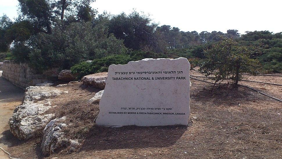 """הגן הלאומי והאוניברסיטאי ע""""ש טבצ'ניק - הר הצופים 1"""