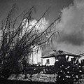כפר שמריהו - מראה-JNF002625.jpeg