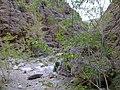 دره آب پلنگ - panoramio.jpg