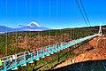 三島スカイウォーク(箱根西麓・三島大吊橋)からの富士山.jpg