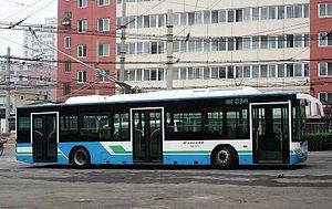 Beijing Bus - Beijing Trolleybus 103