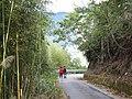 司馬庫斯道路 Smangus Road - panoramio.jpg