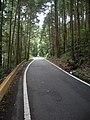国道469号線 精進川 - panoramio.jpg