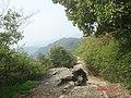 杭州.登十里龙脊...美女山. - panoramio.jpg