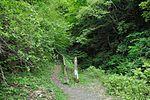 白岩の滝 - panoramio (2).jpg