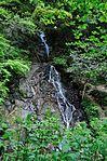 白岩の滝 - panoramio (22).jpg