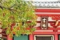 知恩院 Chion-in (11153008113).jpg