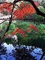 紅葉 ひょうたん池 - panoramio.jpg