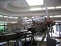 零式艦上戦闘機 52型丙 知覧特攻平和会館.jpg